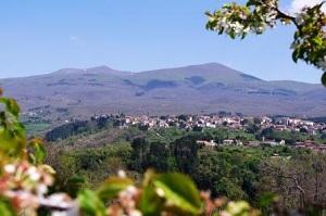 monte_amiata1