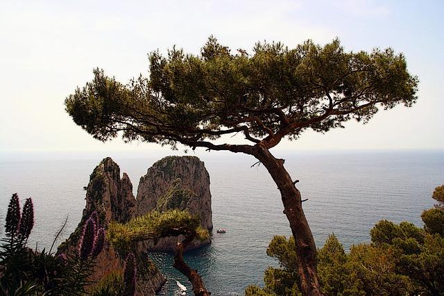 italy, capri, island