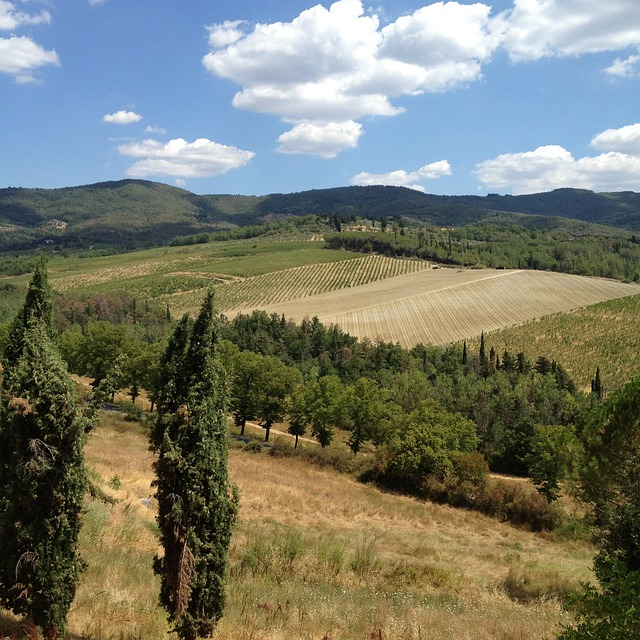 tuscany, field, landscape